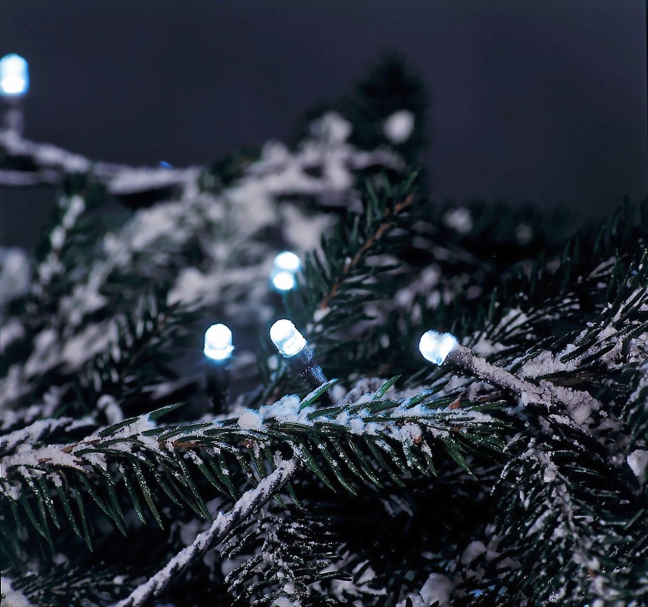 led christbaumbeleuchtung weihnachtsbaumbeleuchtung stecksystem trango kabellose led. Black Bedroom Furniture Sets. Home Design Ideas
