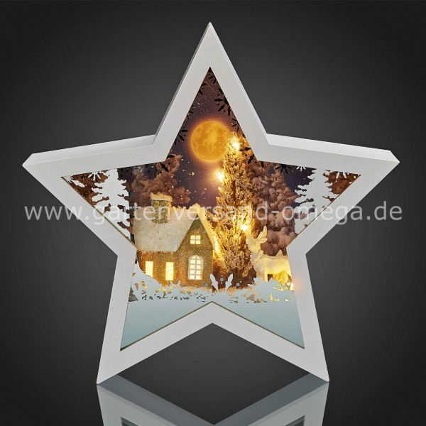 LED 3D-Stern Winterliche Nacht